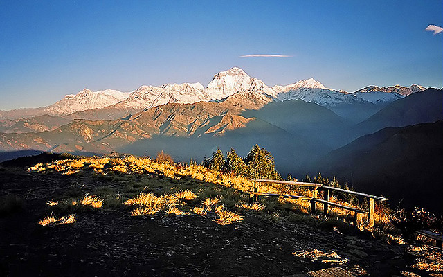 7 Days Annapurna Package: Poon Hill Trek (Standard)