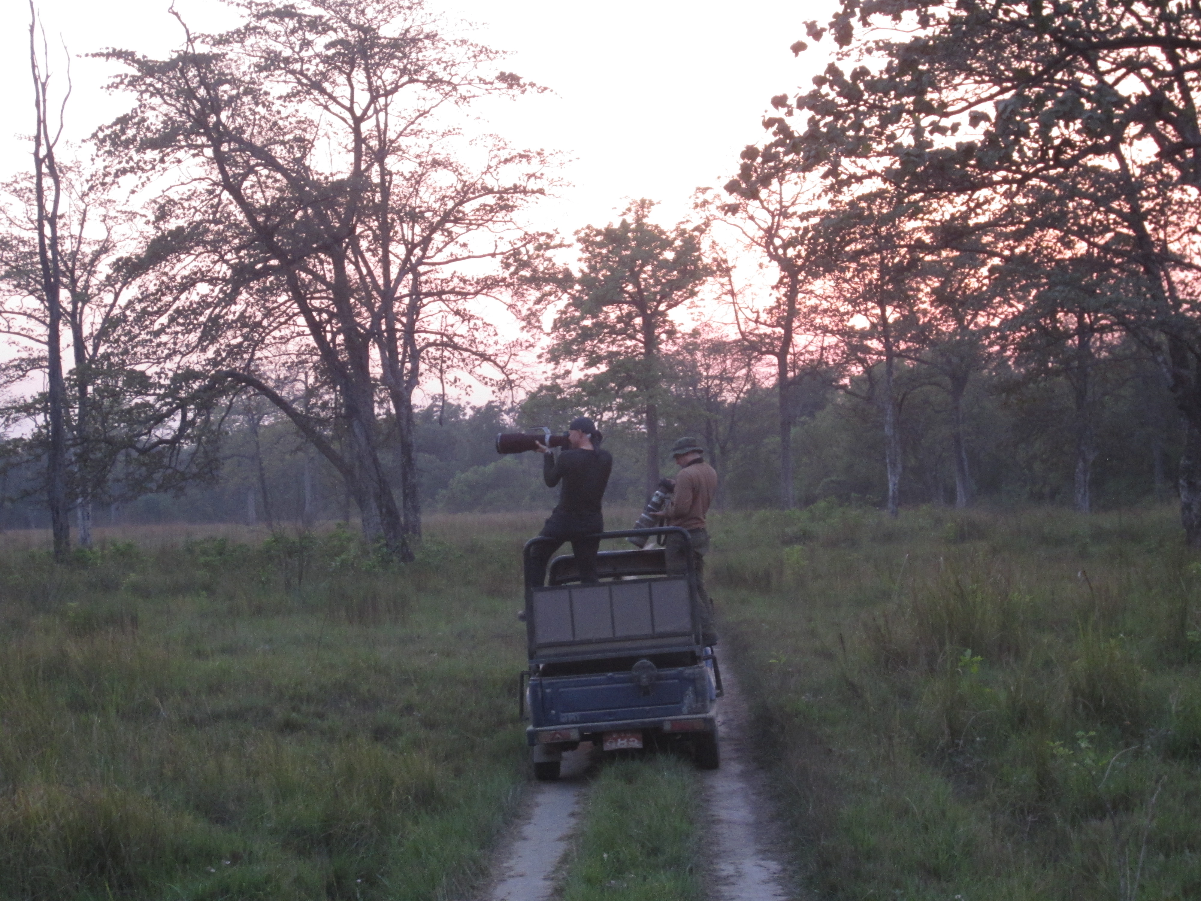 7 Days Bardia Package: Tiger Trailing (Luxury)